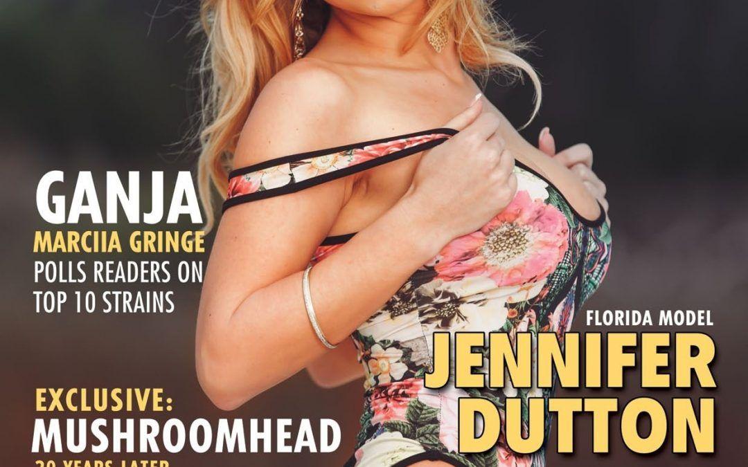 BROWZ Issue 11 – 2014 – Magazine