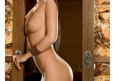 Playboy Special Collector_s Edition - Playmates of the World 2015 (35)